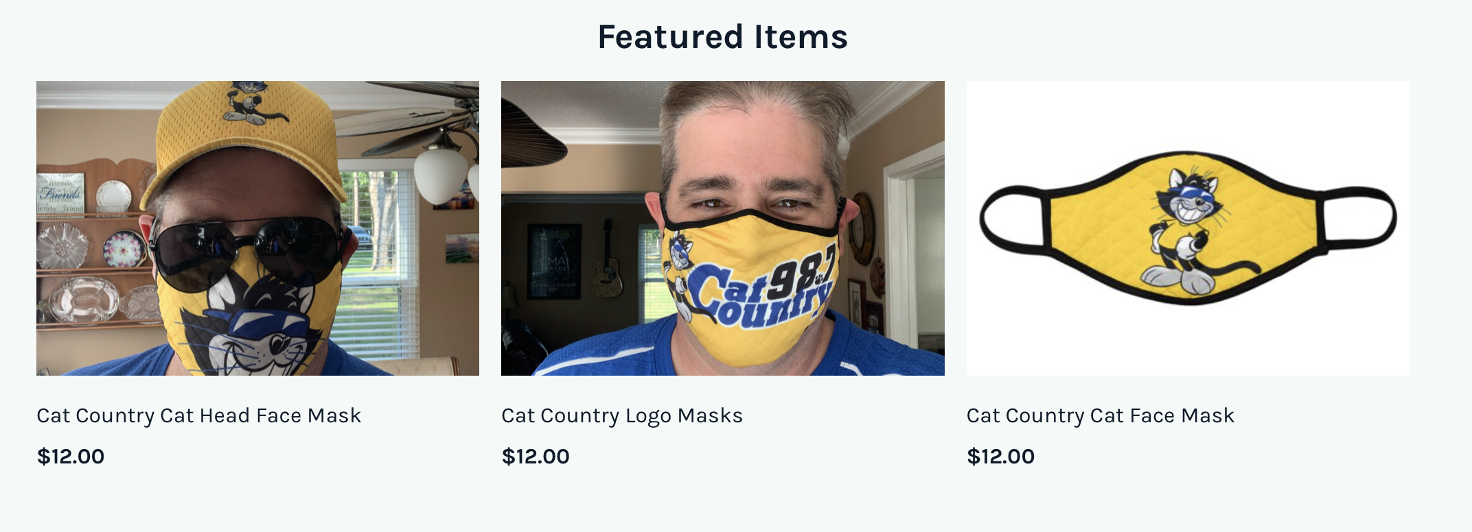 Cat Country Mask Examples